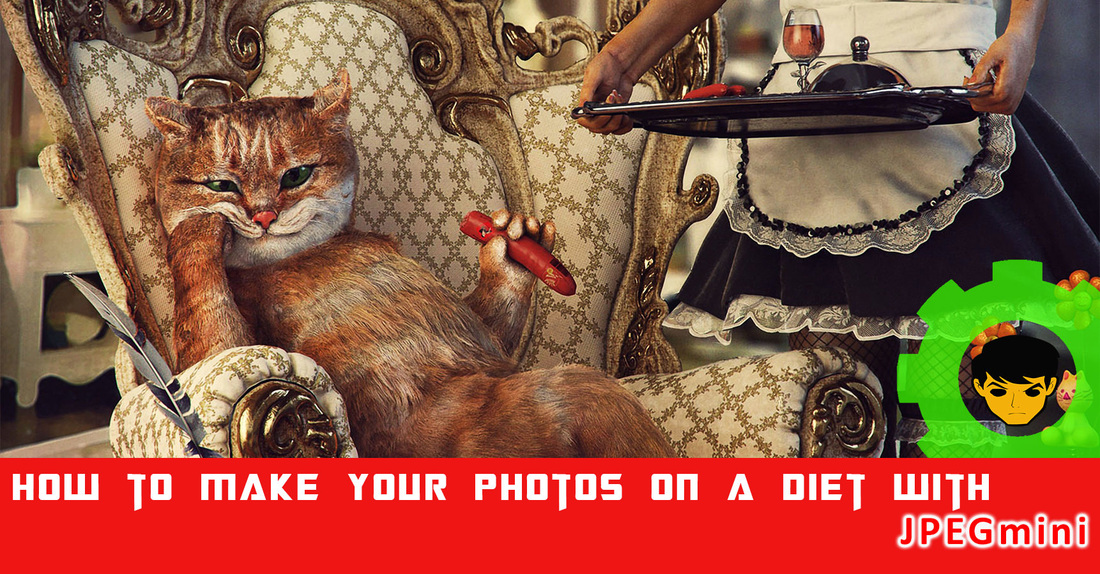How to Make Your Photos on a Diet with JPEGmini