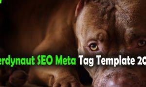 Nerdynaut SEO Meta Tag Template 2015 by ContributorX
