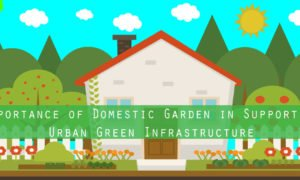 Importance of Domestic Garden in Supporting Urban Green Infrastructure