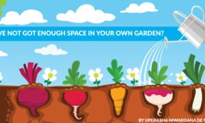 Have not got enough space in your own garden?