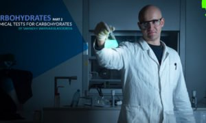 Carbohydrates - Part 2 - Chemical Tests for Carbohydrates