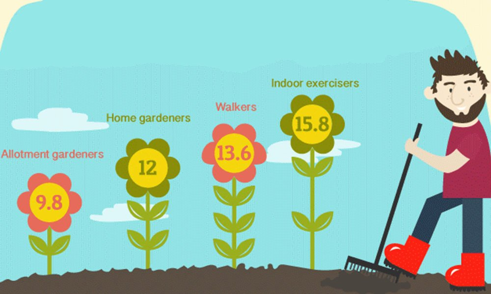 Gardening is good for health