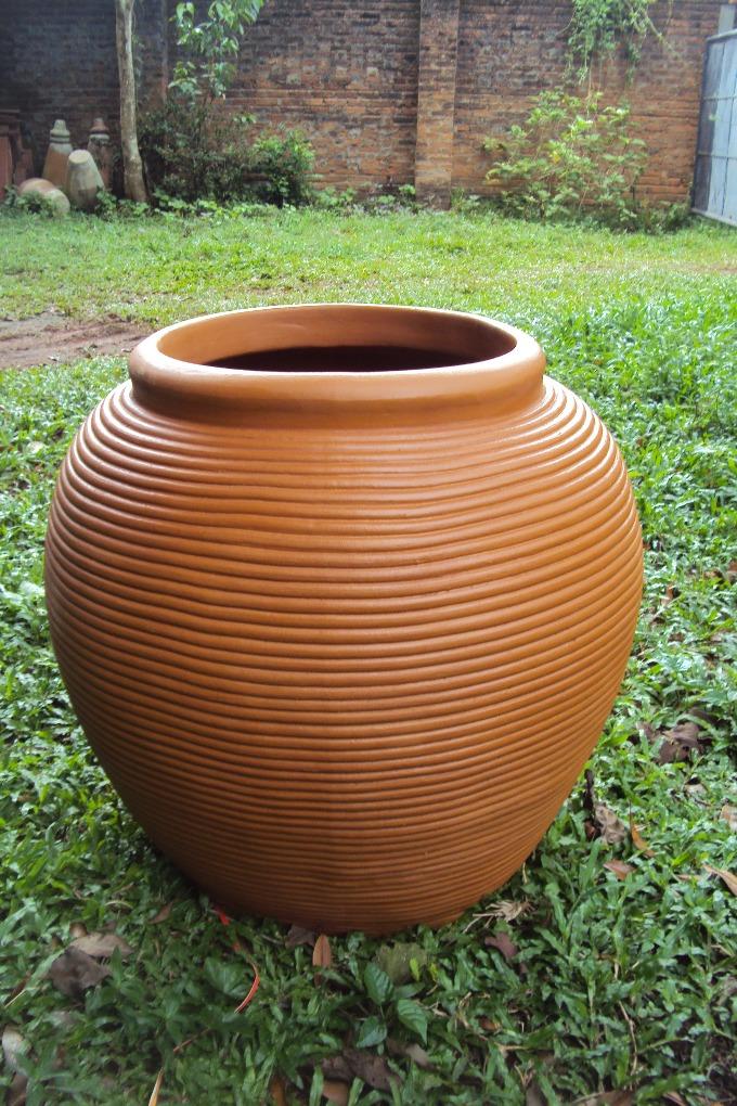 Pot on Grass Sri Lanka