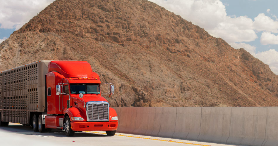 Tips for Driving Safely Around Large Trucks