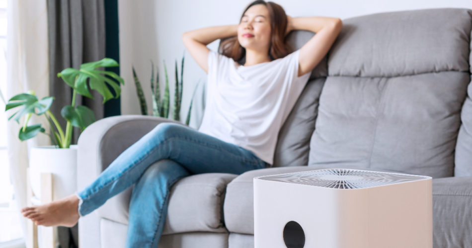 How to Keep the Air in Your House Clean and Why It's Important