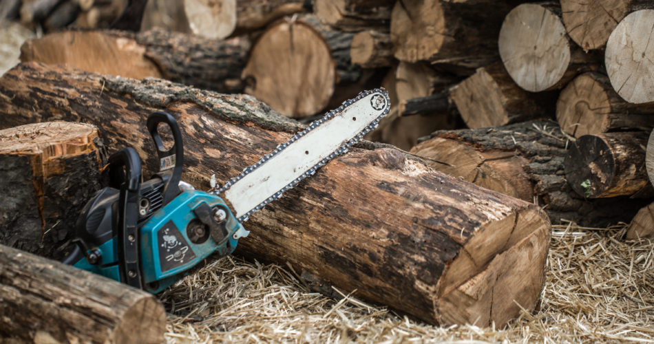 The 6 Definitive Signs It's Time To Change The Bar On A Chainsaw