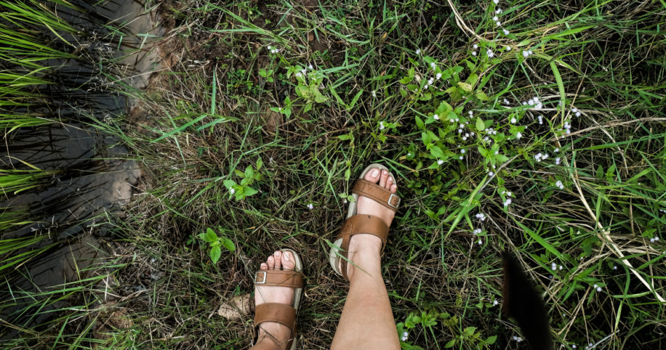 What Makes Slide Shoes Popular With Women?