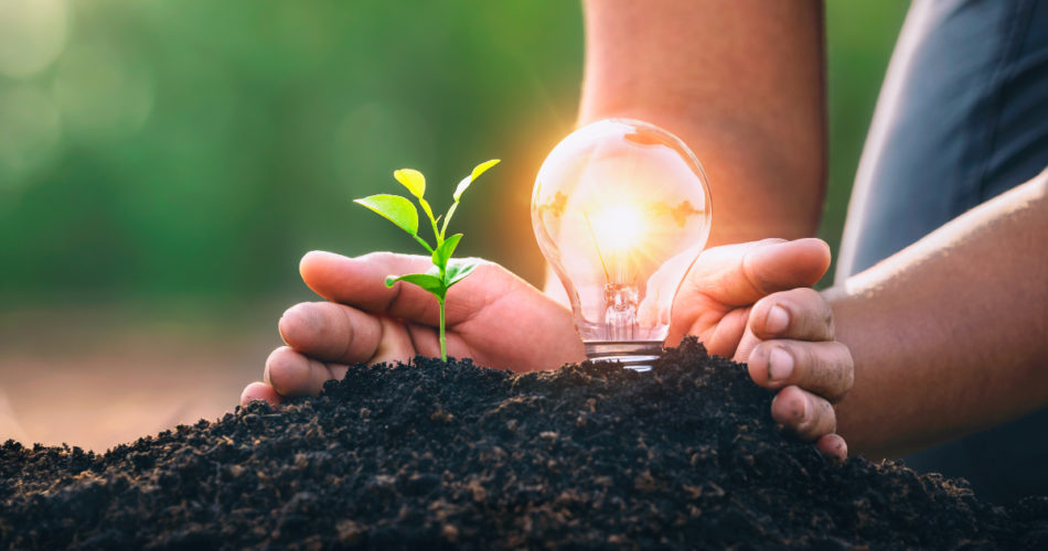 7 Incredible Perks of Green Energy that Make it Perfect for the Upcoming Era