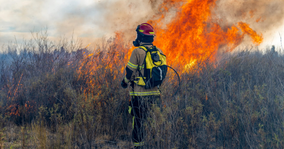 Does House Insurance Cover Forest Fires?